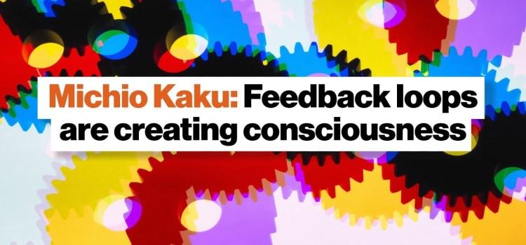 Do Feedback Loops Create Consciousness?