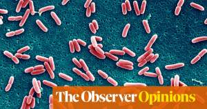 How artificial intelligence outsmarted the superbugs