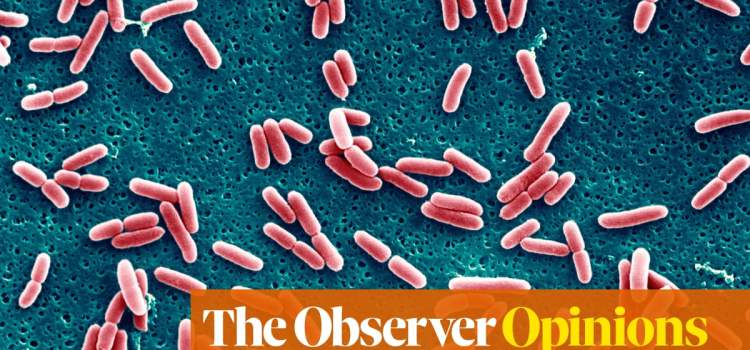 How AI Outsmarted the Superbugs (for now)