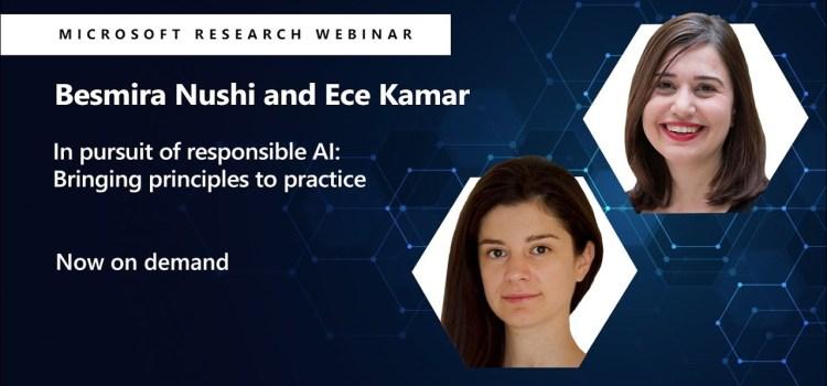 Responsible AI: Bringing Principles to Practice