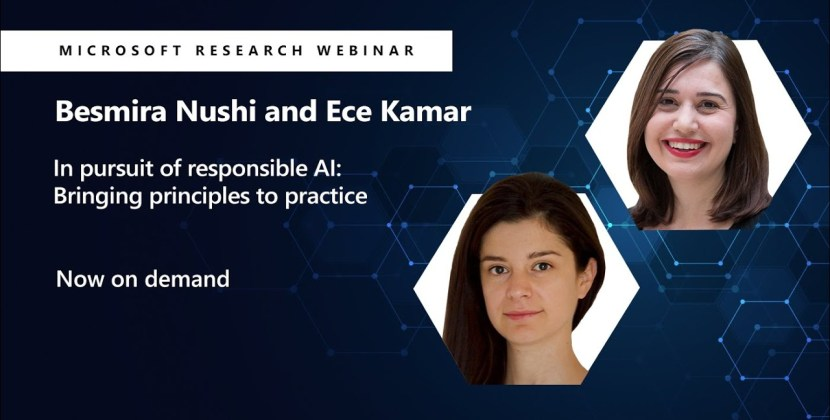 Responsible AI: Bringing Principles to Practice