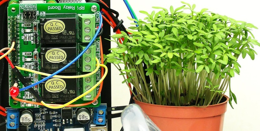 Raspberry Pi Plant Watering
