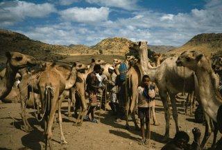 ethiopiev17.jpg