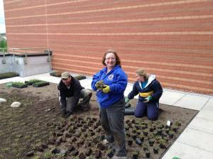 Students Planting South Roof. Taken May 2014 at College of Lake County.