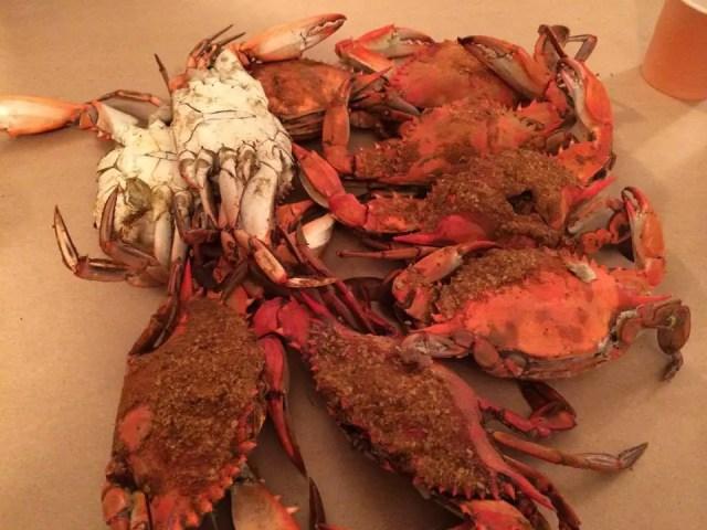 We had 12 medium crabs between the 4 of us