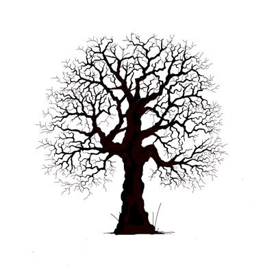 Lavinia Stamps Clear Stamp Oak Tree