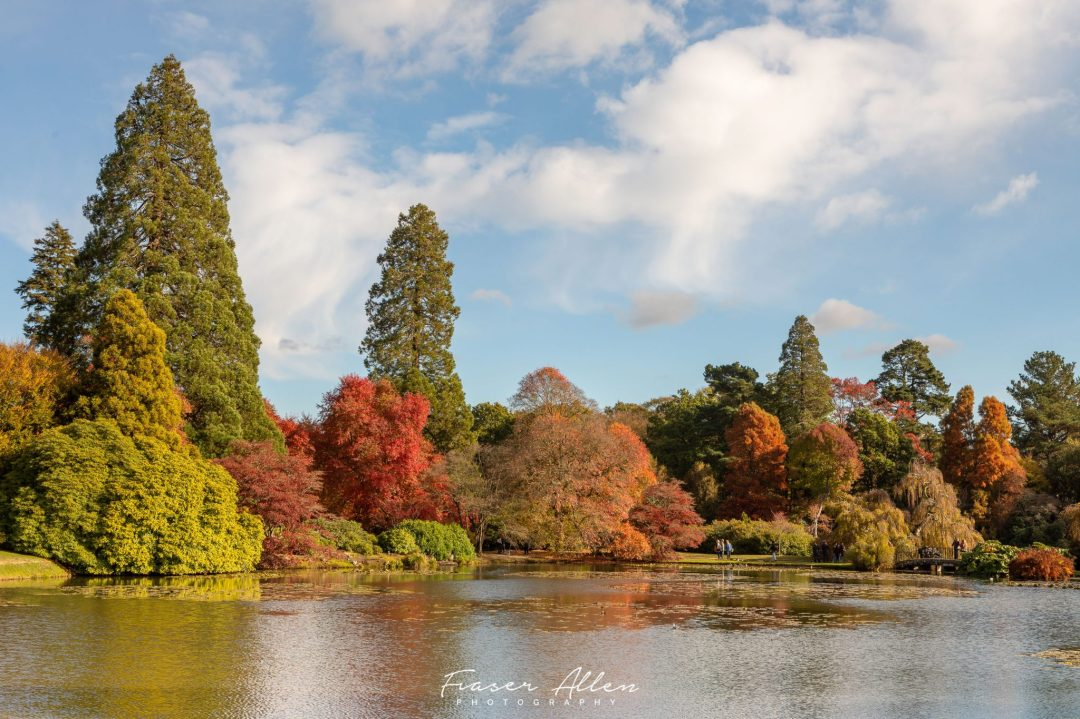 Autumn colours at Sheffield Park and Gardens
