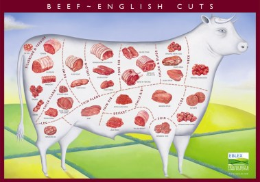 beef_cuts_poster