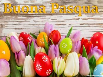Bella Immagine Buona Pasqua con tulipani e frase di Auguri