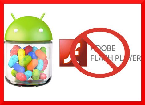 Guida installazione Adobe Flash Player su Android Jelly Bean