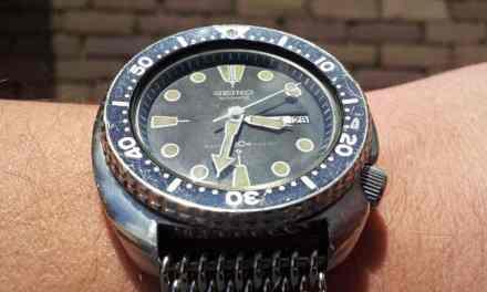 Vintage Turtle (6309 series)