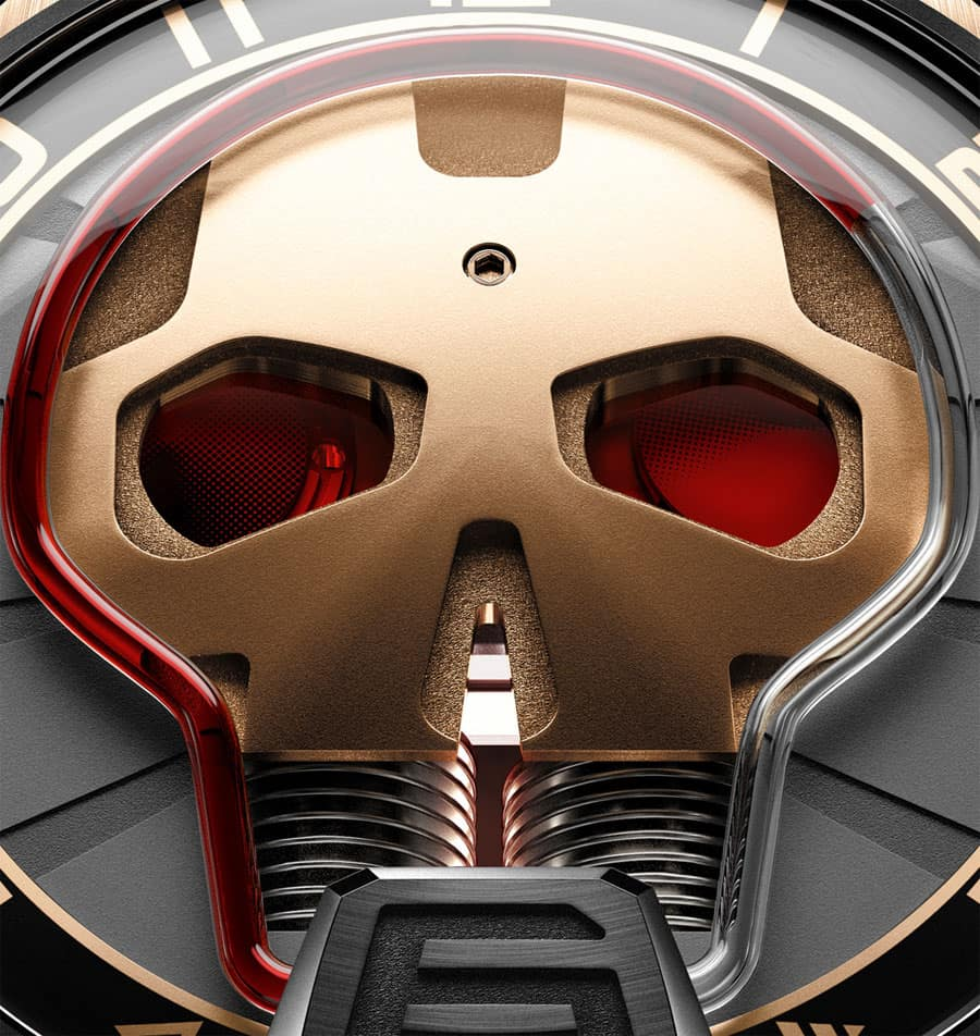 HYTSkullClose-up