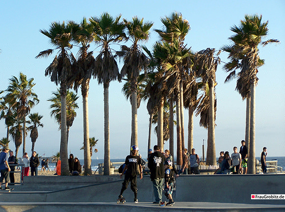 Los Angeles - Skater in Venice Beach
