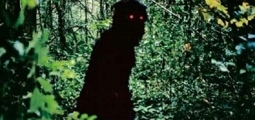 Shadowy fiend found
