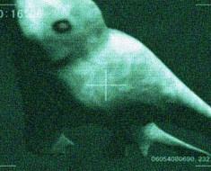 Humanoid underwater