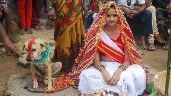 Woman marries dog
