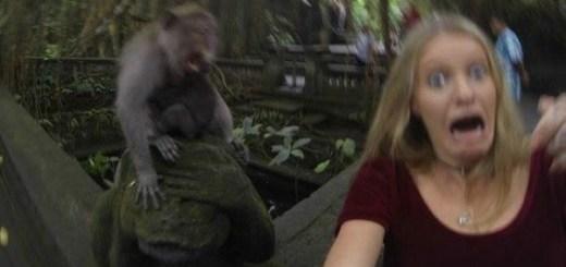 Selfie gone wrong