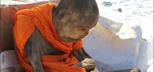 Mummified Mongolian monk found