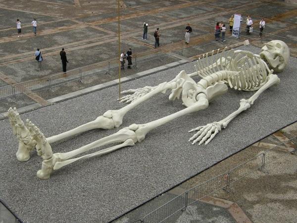 Giant Skeleton scale