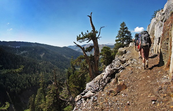 Sequoia National Forest trail