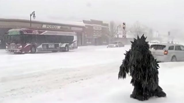 Pot Sasquatch captured on camera in Springfield