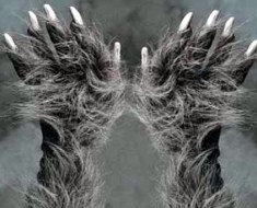 Hairy hands of Dartmoor