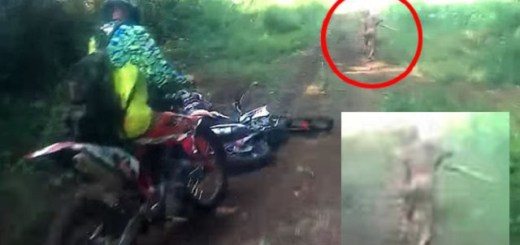 Indonesian dirt bike tour captures unknown mutant creature on camera