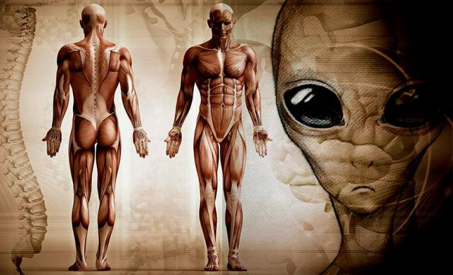 Mankind has evolved on another planet researcher claims