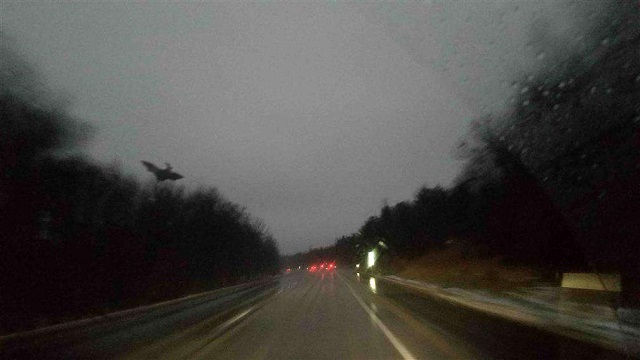 Pennsylvanian construction workers capture photo of the Jersey Devil
