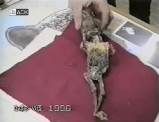 Small alien remains found in Russia