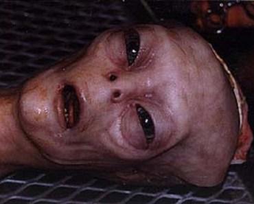 dead alien