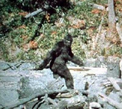 1967 Patterson-Gimlin film