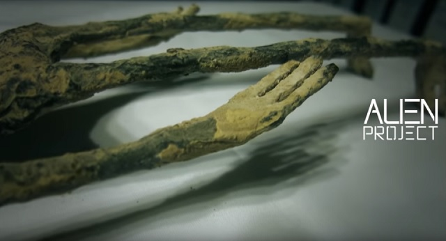 Alien Project Peru alien corpse