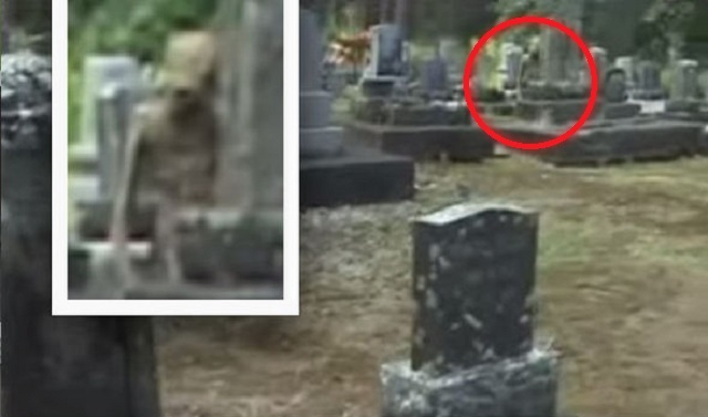 Alien at graveyard zoom