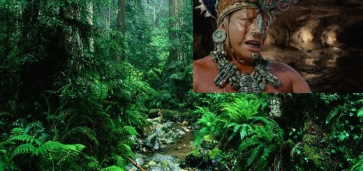 Thousand year old Mayan cave priest found