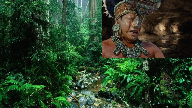 Mayan Jungle cave priest