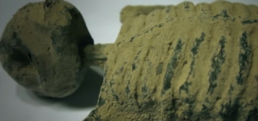 Peruvian tomb robbers recover alien remains