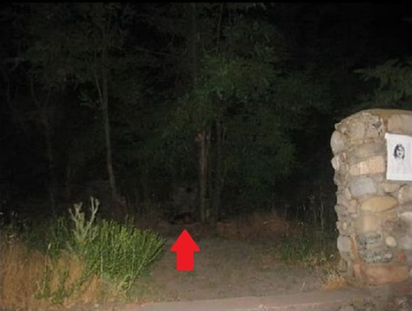 Weird thing in the shadows arrow