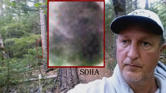 Dr Matthew Johnson Bigfoot sighting