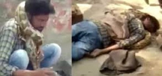 Snake charmer strangled by his own snake