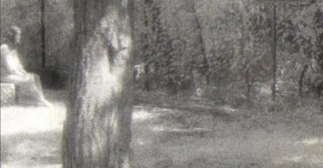 Ghost lady sitting Bachelor's Grove Cemetery
