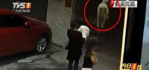 Woman knocked unconscious from falling dog