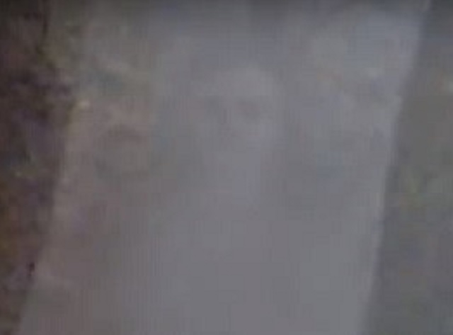 Ghost face in the forest of India