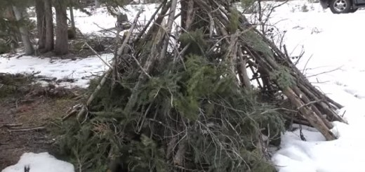 Bigfoot Hut Found in Colorado