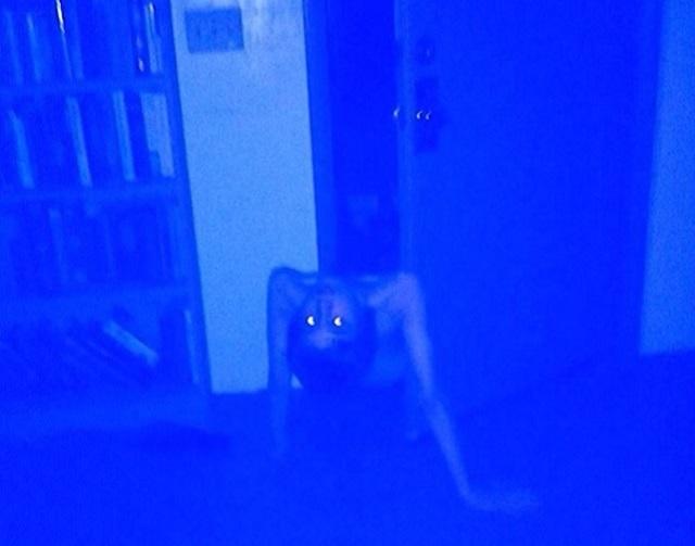 Possessed boy crawls from closet door