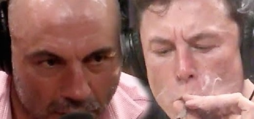 Joe Rogan Smokes Weed With Elon Musk During Unusal Interview