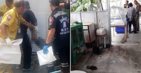 Restaurant Owner Kills Customer Then Serves Them To Vegetarian Diners