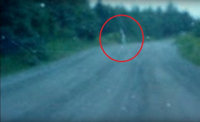 Dirty Car Window Or Ghost Crossing The Road