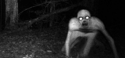 Strange Humanoids Spotted In The Wilderness Of Virginia
