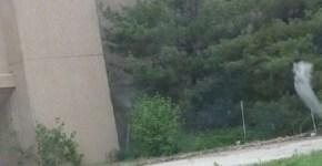 Randall Park shopping mall ghost